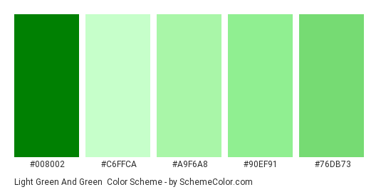Light Green and Green - Color scheme palette thumbnail - #008002 #c6ffca #a9f6a8 #90ef91 #76db73