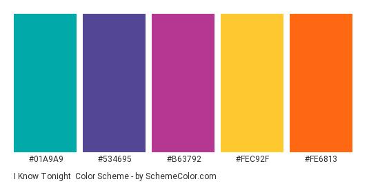 I Know Tonight - Color scheme palette thumbnail - #01A9A9 #534695 #B63792 #FEC92F #FE6813