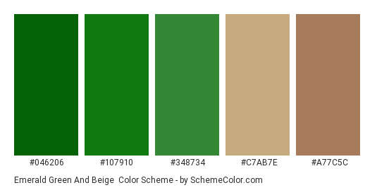 Emerald Green And Beige Color Scheme Palette Thumbnail 046206 107910 348734