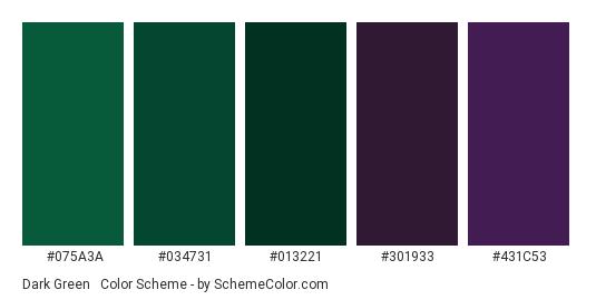 Dark Green & Purple - Color scheme palette thumbnail - #075A3A #034731 #013221 #301933 #431C53