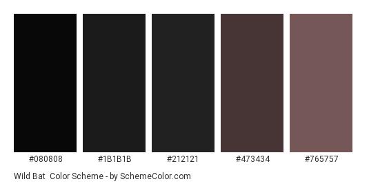 Wild Bat - Color scheme palette thumbnail - #080808 #1B1B1B #212121 #473434 #765757