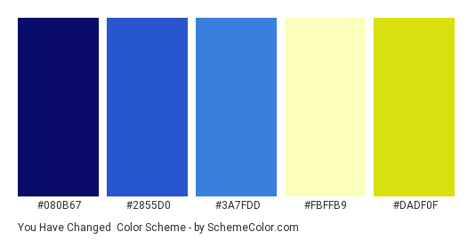 You Have Changed - Color scheme palette thumbnail - #080B67 #2855D0 #3A7FDD #FBFFB9 #DADF0F