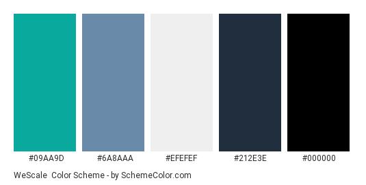 WeScale - Color scheme palette thumbnail - #09aa9d #6a8aaa #efefef #212e3e #000000
