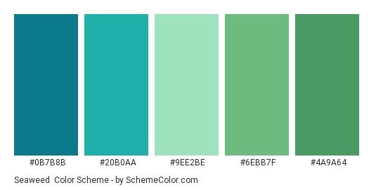 Seaweed - Color scheme palette thumbnail - #0b7b8b #20b0aa #9ee2be #6ebb7f #4a9a64