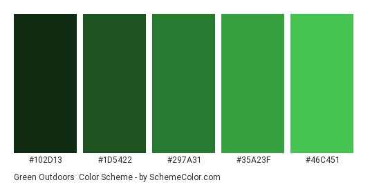 Green Outdoors - Color scheme palette thumbnail - #102D13 #1D5422 #297A31 #35A23F #46C451