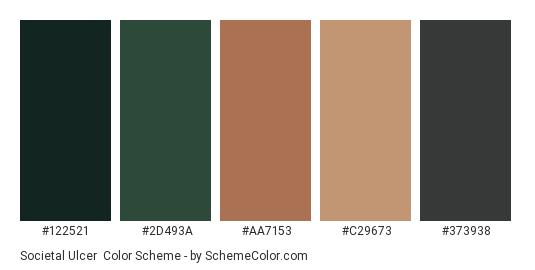 Societal Ulcer - Color scheme palette thumbnail - #122521 #2D493A #AA7153 #C29673 #373938