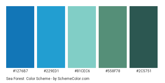 Sea Forest - Color scheme palette thumbnail - #1276b7 #229ed1 #81cec6 #558f78 #2c5751