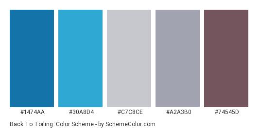 Back to Toiling - Color scheme palette thumbnail - #1474aa #30a8d4 #c7c8ce #a2a3b0 #74545d