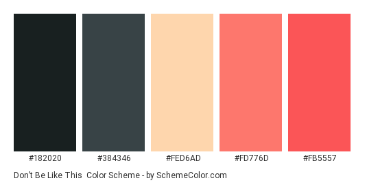Don't Be Like This - Color scheme palette thumbnail - #182020 #384346 #fed6ad #fd776d #fb5557