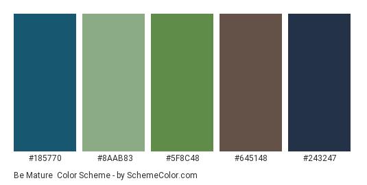 Be Mature - Color scheme palette thumbnail - #185770 #8aab83 #5f8c48 #645148 #243247