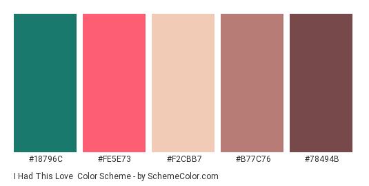 I Had This Love - Color scheme palette thumbnail - #18796c #fe5e73 #f2cbb7 #b77c76 #78494b