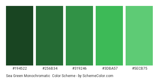 Sea Green Monochromatic - Color scheme palette thumbnail - #194522 #256B34 #319246 #3DBA57 #5ECB75