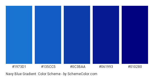 Navy Blue Gradient - Color scheme palette thumbnail - #1973d1 #135cc5 #0c3baa #061993 #010280