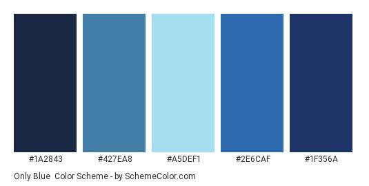 Only Blue - Color scheme palette thumbnail - #1A2843 #427EA8 #A5DEF1 #2E6CAF #1F356A