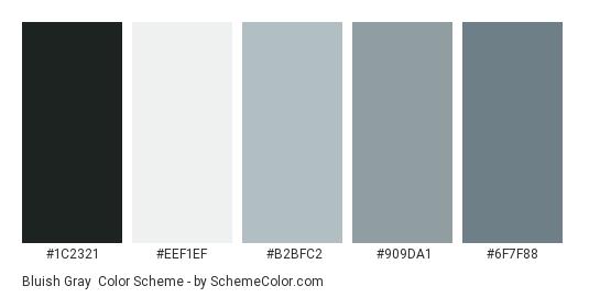 Bluish Gray - Color scheme palette thumbnail - #1C2321 #EEF1EF #B2BFC2 #909DA1 #6F7F88