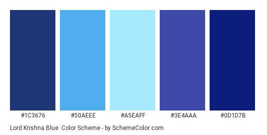 Lord Krishna Blue - Color scheme palette thumbnail - #1C3676 #50AEEE #A5EAFF #3E4AAA #0D1D7B