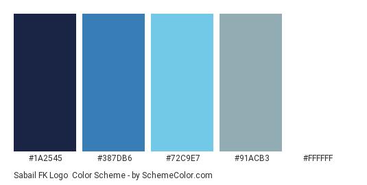 Sabail FK Logo - Color scheme palette thumbnail - #1a2545 #387db6 #72c9e7 #91acb3 #ffffff