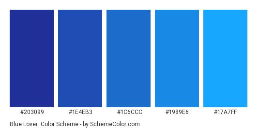 Blue Lover - Color scheme palette thumbnail - #203099 #1E4EB3 #1C6CCC #1989E6 #17A7FF