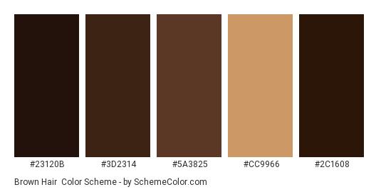 Brown Hair Color Scheme » Brown » SchemeColor.com