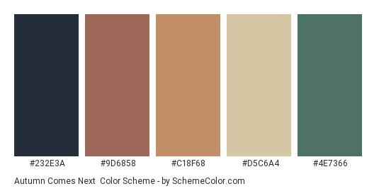 Autumn Comes Next - Color scheme palette thumbnail - #232E3A #9D6858 #C18F68 #D5C6A4 #4E7366