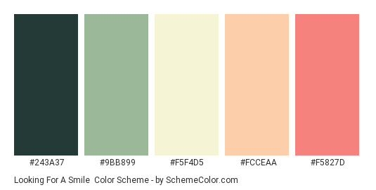 Looking for a Smile - Color scheme palette thumbnail - #243A37 #9BB899 #F5F4D5 #FCCEAA #F5827D