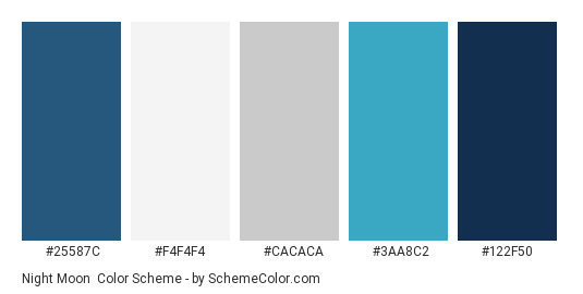 Night Moon - Color scheme palette thumbnail - #25587c #f4f4f4 #cacaca #3aa8c2 #122f50