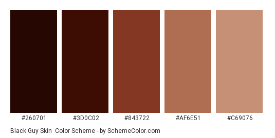 Black Guy Skin - Color scheme palette thumbnail - #260701 #3D0C02 #843722 #AF6E51 #C69076
