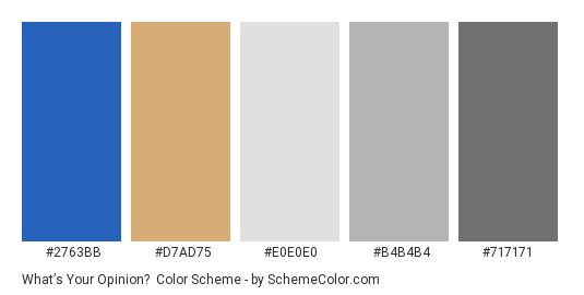 What's Your Opinion? - Color scheme palette thumbnail - #2763bb #d7ad75 #e0e0e0 #b4b4b4 #717171