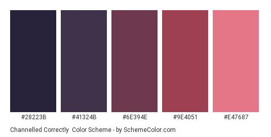 Channelled Correctly - Color scheme palette thumbnail - #28223B #41324B #6E394E #9E4051 #E47687
