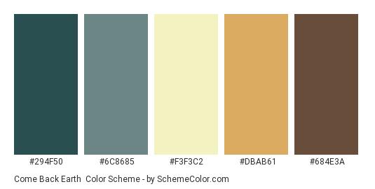Come Back Earth - Color scheme palette thumbnail - #294F50 #6C8685 #F3F3C2 #DBAB61 #684E3A