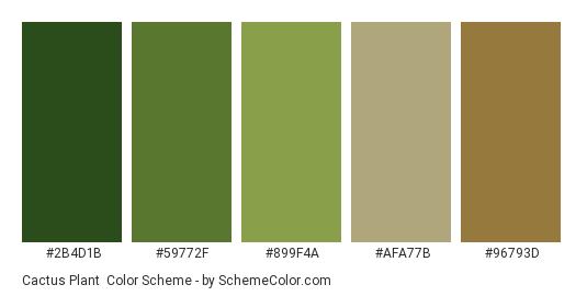 Cactus Plant - Color scheme palette thumbnail - #2B4D1B #59772F #899F4A #AFA77B #96793D