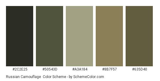 Russian Camouflage - Color scheme palette thumbnail - #2c2e25 #50543d #a3a184 #8b7f57 #635d40
