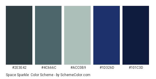 Space Sparkle - Color scheme palette thumbnail - #2e3e42 #4c666c #acc0b9 #1d326d #101c3d