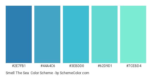 Smell the Sea - Color scheme palette thumbnail - #2e7fb1 #44a4c6 #3ebdd0 #62d9d1 #7cebd4