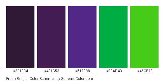 Fresh Brinjal - Color scheme palette thumbnail - #301934 #431C53 #512888 #00AD43 #46CB18