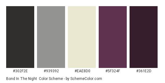 Bond In The Night - Color scheme palette thumbnail - #302f2e #939392 #eae8d0 #5f324f #361e2d
