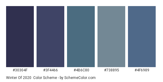 Winter of 2020 - Color scheme palette thumbnail - #30304f #3f4466 #4b6c80 #738895 #4f6989