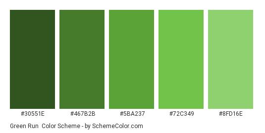 Green Run - Color scheme palette thumbnail - #30551E #467B2B #5BA237 #72C349 #8FD16E