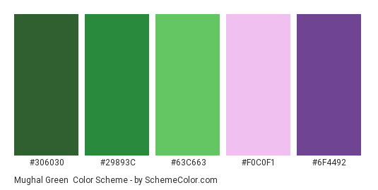 Mughal Green - Color scheme palette thumbnail - #306030 #29893C #63C663 #F0C0F1 #6F4492