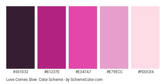 Love Comes Slow - Color scheme palette thumbnail - #361D32 #b1237e #e347a7 #e79ecc #fddce6