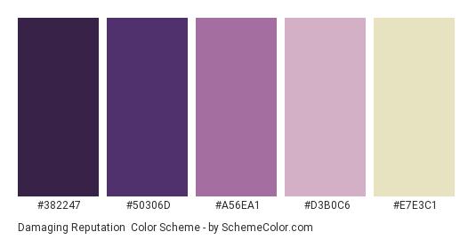 Damaging Reputation - Color scheme palette thumbnail - #382247 #50306D #A56EA1 #D3B0C6 #E7E3C1