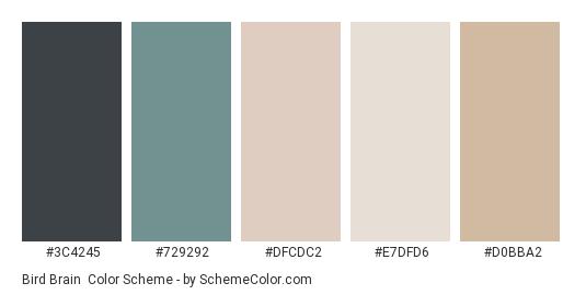 Bird Brain - Color scheme palette thumbnail - #3C4245 #729292 #DFCDC2 #E7DFD6 #D0BBA2