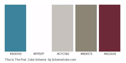 This is the First - Color scheme palette thumbnail - #3d839c #fffdff #c7c1bd #8b8575 #6d2a36