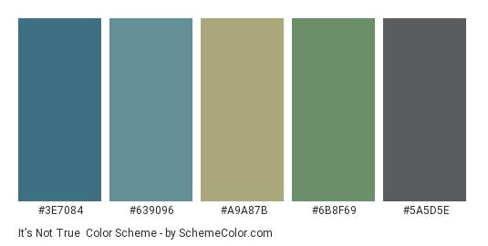 It's Not True - Color scheme palette thumbnail - #3e7084 #639096 #a9a87b #6b8f69 #5a5d5e