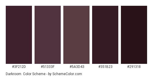 Darkroom - Color scheme palette thumbnail - #3f212d #51333f #5a3d43 #351b23 #291318