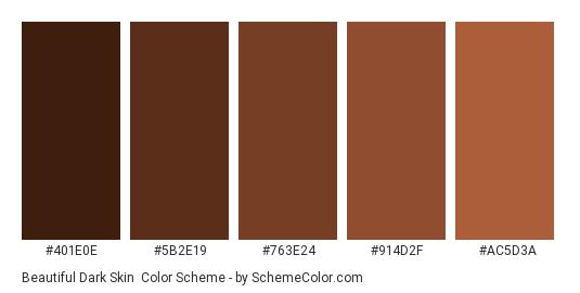 Beautiful Dark Skin - Color scheme palette thumbnail - #401E0E #5B2E19 #763E24 #914D2F #AC5D3A