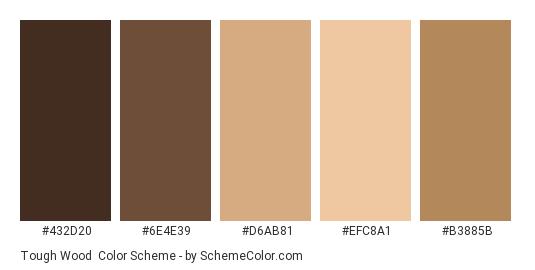 Tough Wood - Color scheme palette thumbnail - #432D20 #6E4E39 #D6AB81 #EFC8A1 #B3885B