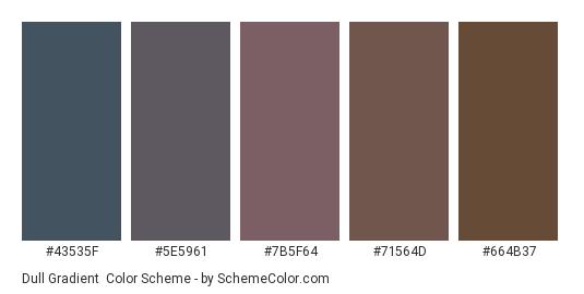 Dull Gradient - Color scheme palette thumbnail - #43535f #5e5961 #7b5f64 #71564d #664b37