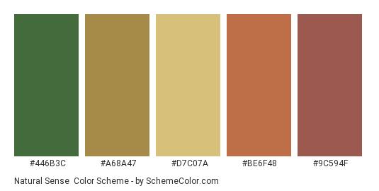 Natural Sense - Color scheme palette thumbnail - #446b3c #a68a47 #d7c07a #be6f48 #9c594f