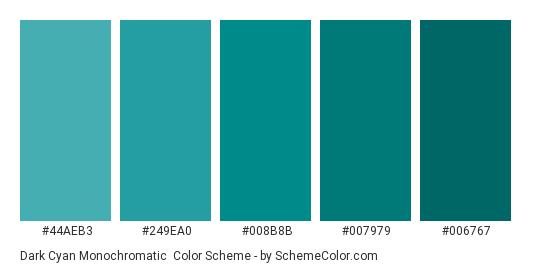 Dark Cyan Monochromatic - Color scheme palette thumbnail - #44aeb3 #249ea0 #008b8b #007979 #006767